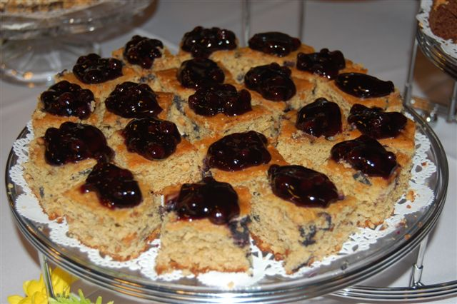 Nutty Blueberry Squares